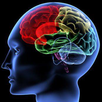 efectos psicologicos de la música en los negocios