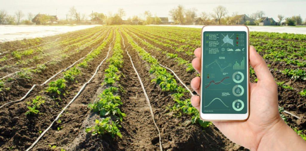La gestión agropecuaria permite aumentar la productividad de la empresa haciendo uso de la tecnología.