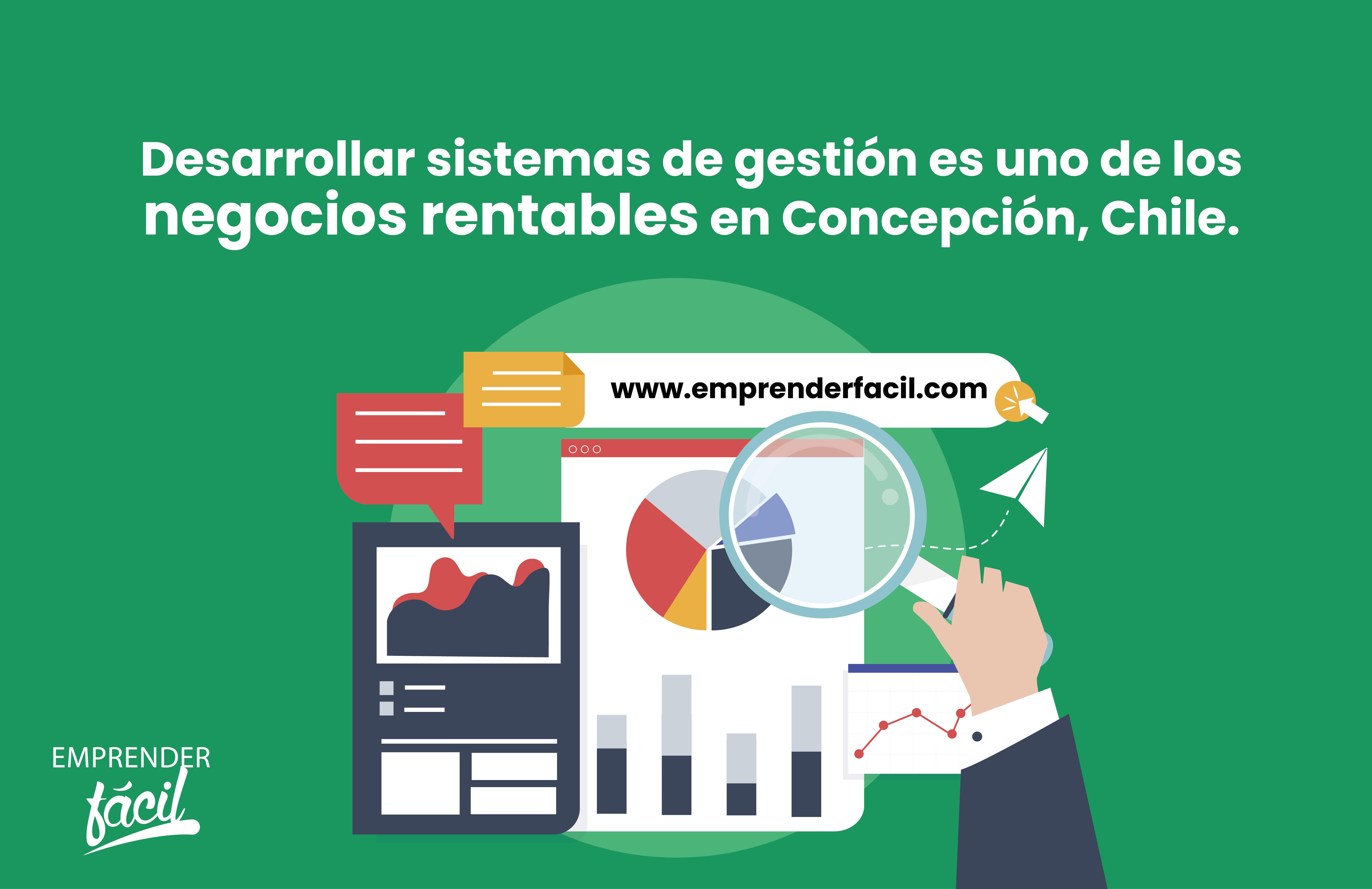Desarrollar sistemas de gestión es uno de los negocios rentables en Concepción, Chile.