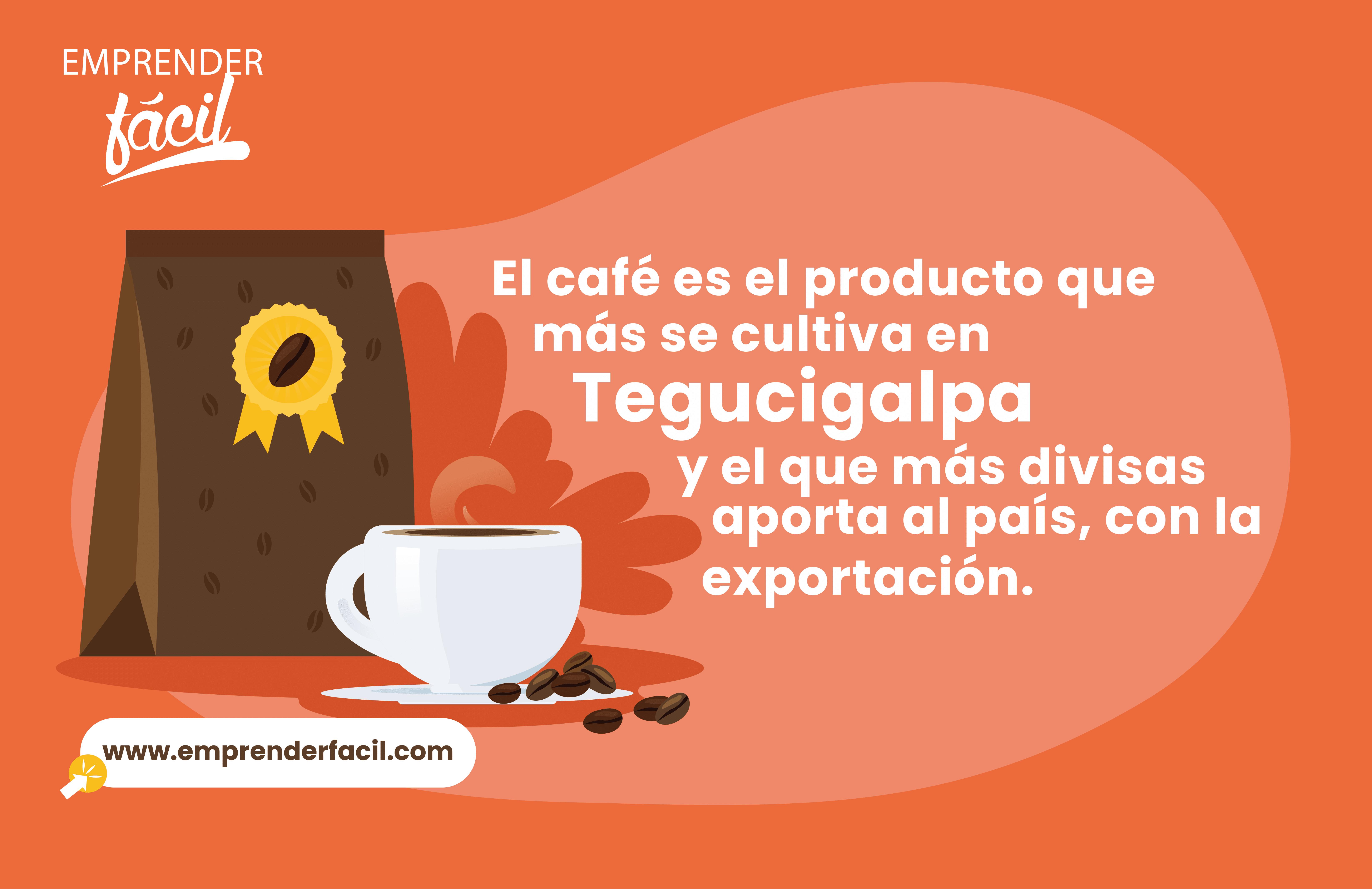 Realizar café artesanal es uno de los negocios rentables en Tegucigalpa