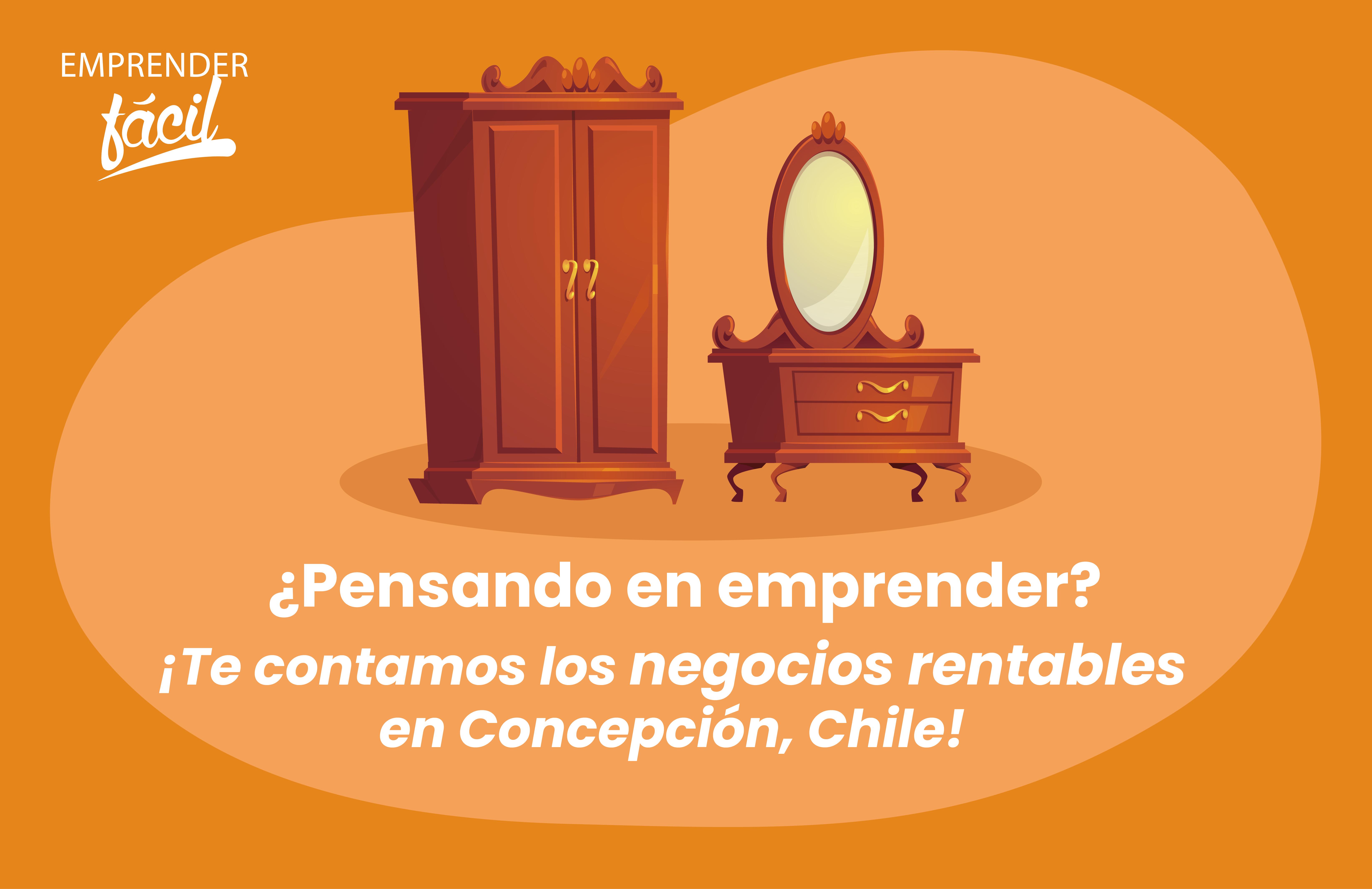 Negocios rentables en Concepción Chile. ¡Efectivos!