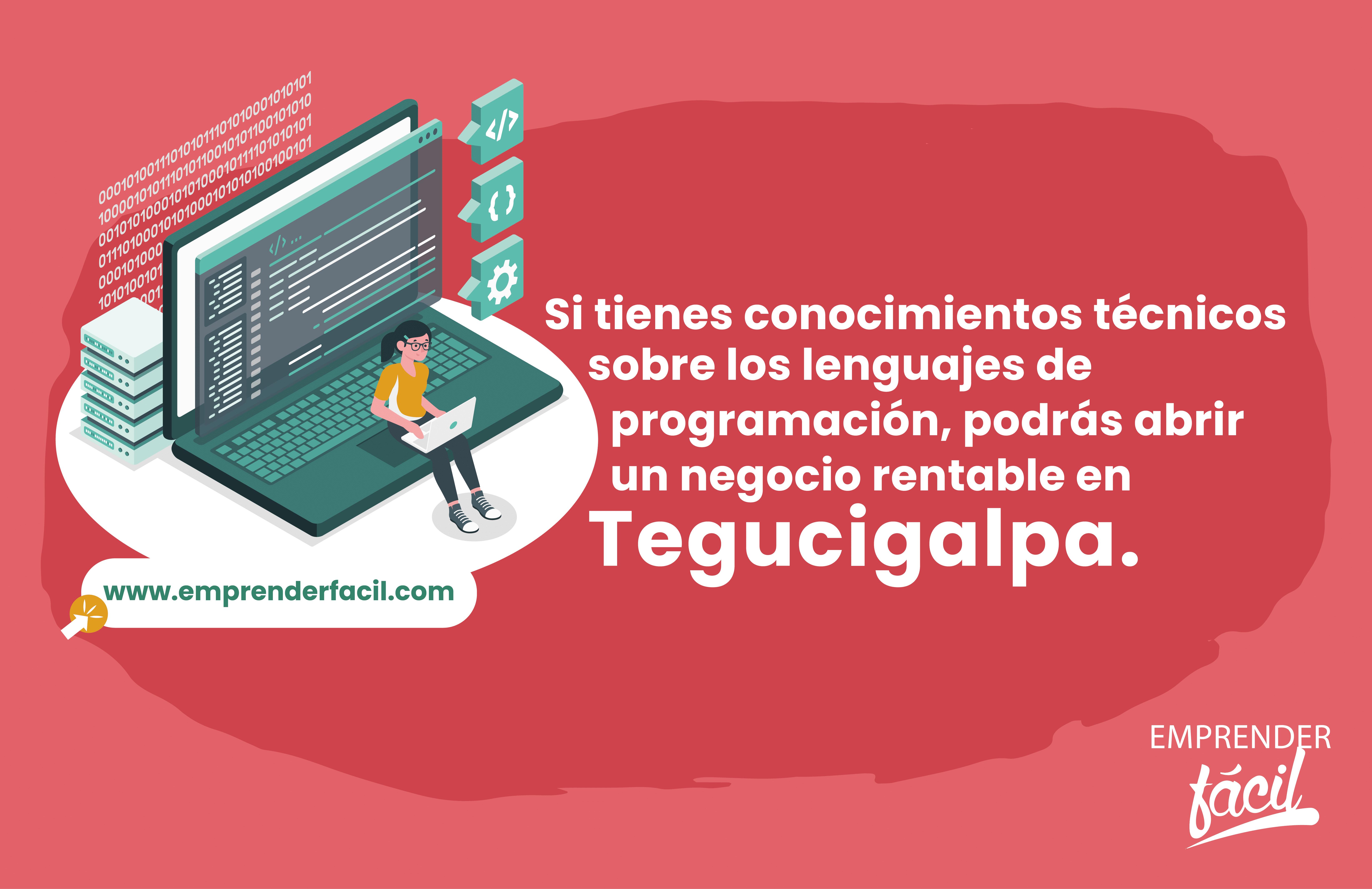 El desarrollo de aplicaciones es uno de los negocios rentables en Tegus.