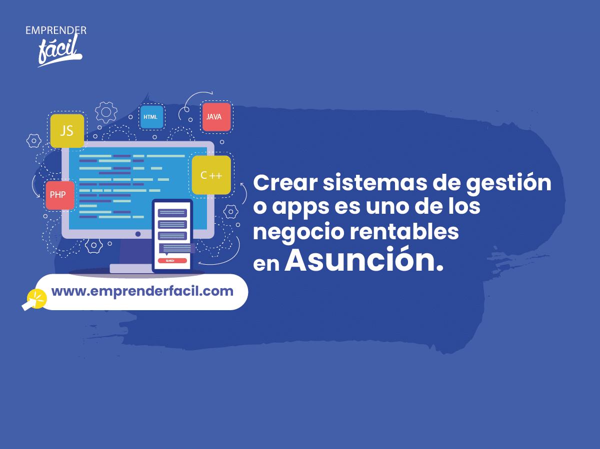 Crear sistemas de gestión o apps es uno de los negocios rentables en Asunción.