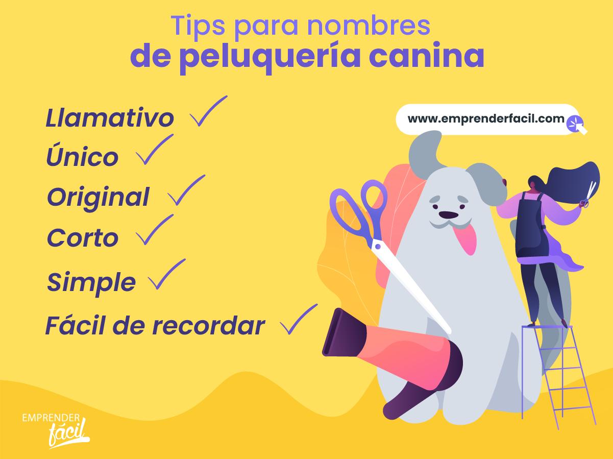 Tips para nombres de Peluquería Canina.